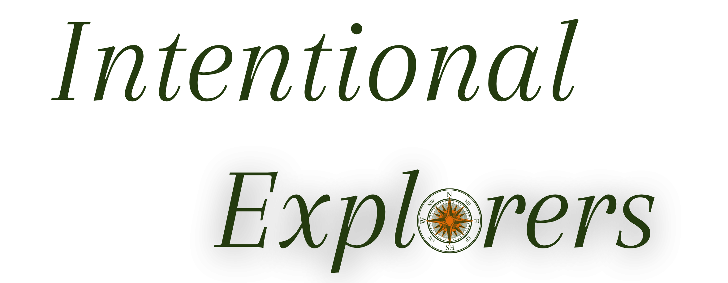 Intentional Explorers